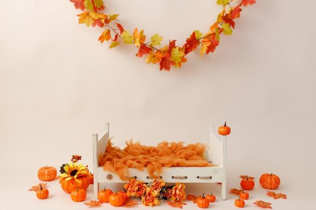 가을 아이템이 있는 신생아 사진을 위한 디지털 배경
