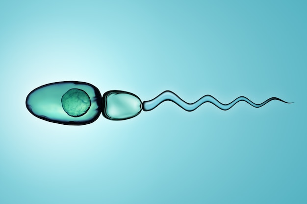 Digital illustration of sperm cells