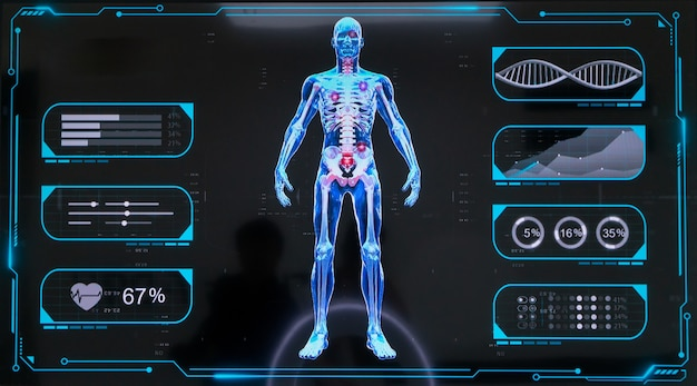 디지털 마네킹, 인체 골격 디스플레이