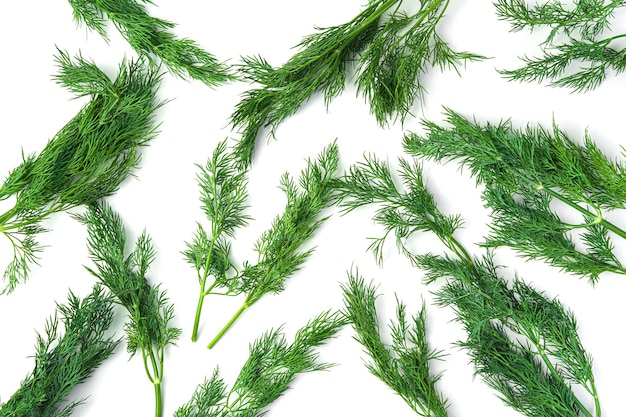 Dill branches are randomly arranged on a white table. top view, horizontal.