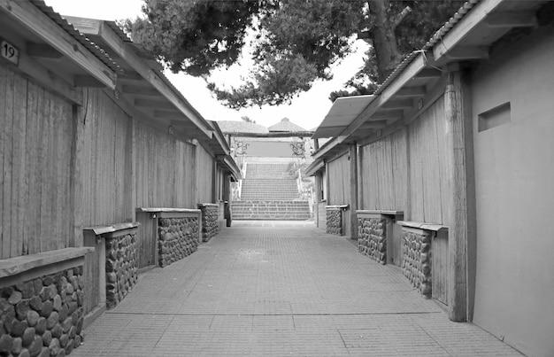 モノクロームの田舎の建物がある路地の透視図の縮小