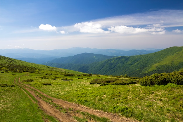 밝은 푸른 하늘 복사 공간 배경에 우 디 산 능선으로 이어지는 녹색 잔디 언덕에 먼지 자동차 트랙. 관광 및 여행 개념.