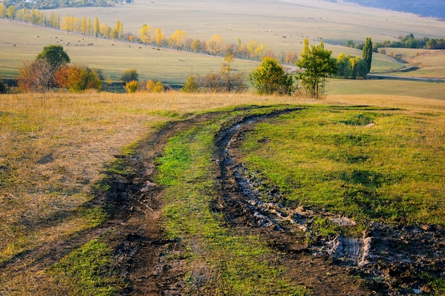 Грязная грунтовая дорога, проходящая через поле