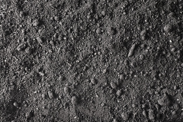 Dirt land texture. a fertile soil background.