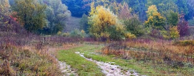 未舗装の道路が森へ、秋の森の色とりどりの木々