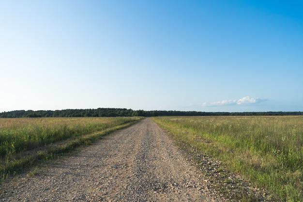 시골 들판의 비포장 도로 여름 시간