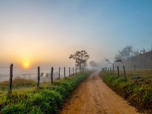 霧と日の出のある農村地域の未舗装道路