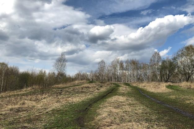 春の裸木の上にある丘の上の未舗装の道路