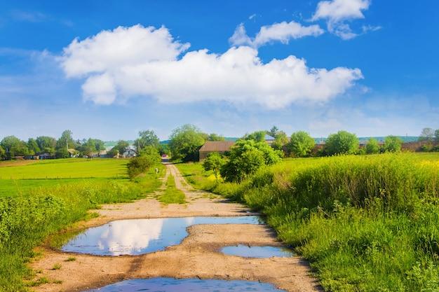 緑の野原で雨が降った後の水たまりのある未舗装の道路 Premium写真