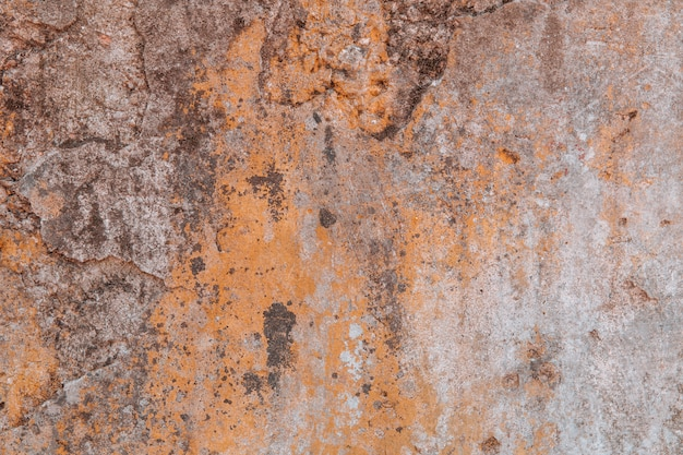 Dirty old concrete wall with some mold. background. texture