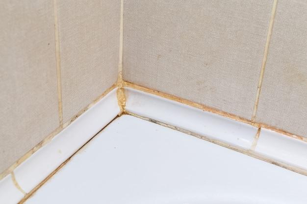 アパートを掃除する前にバスルームの汚れたタイル
