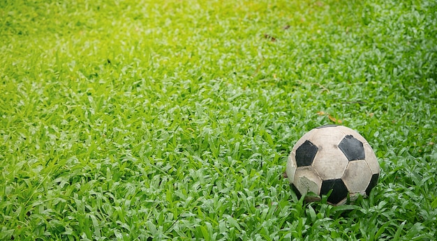 Dirty used football on grass.old soccer on green grass.