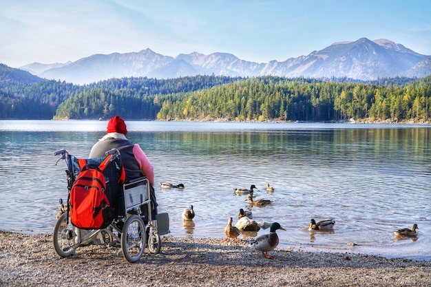 Disabled handicapped woman sitting on wheelchair and feeding bread for mallard duck