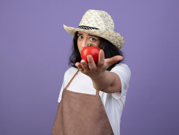 Il giovane giardiniere femminile deluso del brunette in cappello da giardinaggio d'uso uniforme tiene fuori il pomodoro isolato sulla parete viola