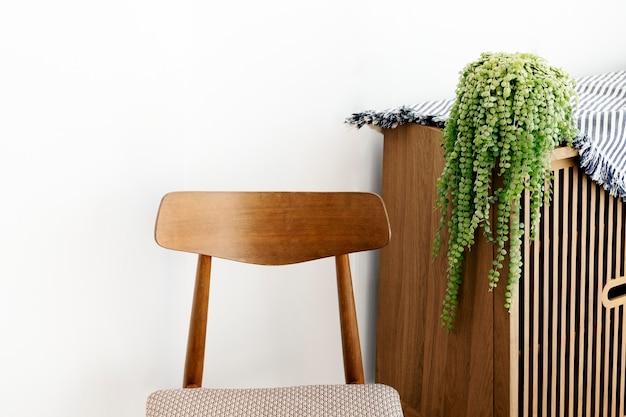 Растение дисхидия на деревянном шкафу