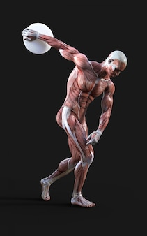 Discobolus - 3d render of male figures pose with muscle
