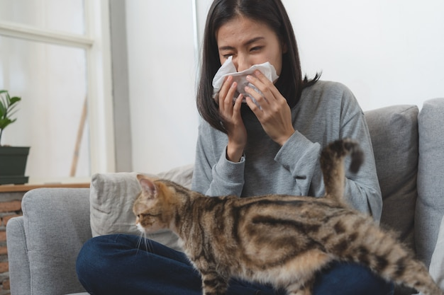 Diseases from pets concept. woman is sneezing from fur allergy on the sofa and playing with her cat.