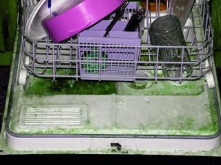 Disgusting dishwasher in abandoned proje