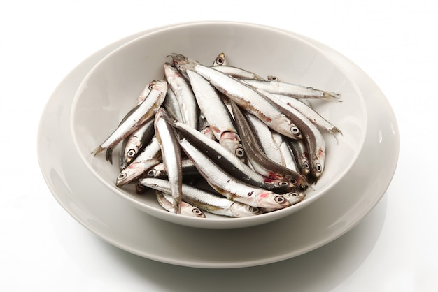 Dish of anchovies on white