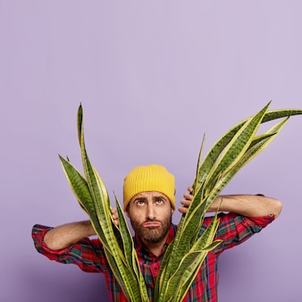 Giardiniere insoddisfatto in posa con una grande pianta di serpente in vaso