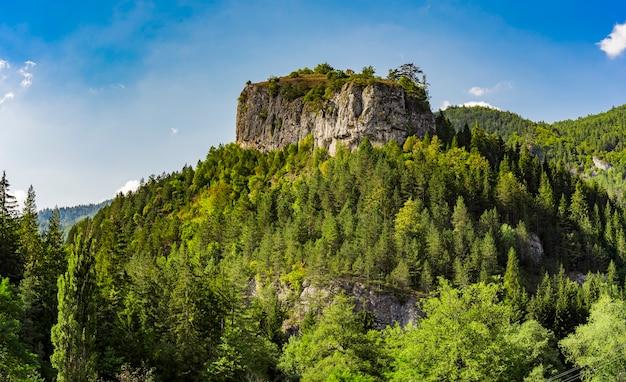 夏のセルビアのタラ山のravnastena(フラットロック)の距離ビュー