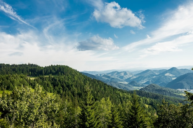セルビアのタラ山からzaovine湖の遠景