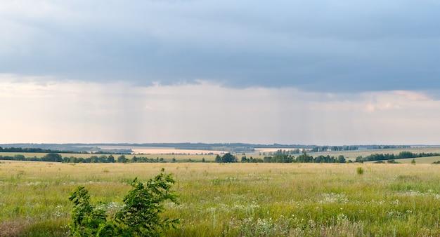 Дождь в зеленых полях