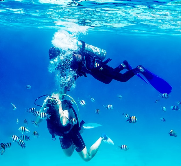 Diver swimming underwater with coral reefs