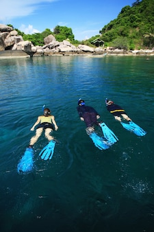 Divers on island in southern thailand, koh tao, chumphon.