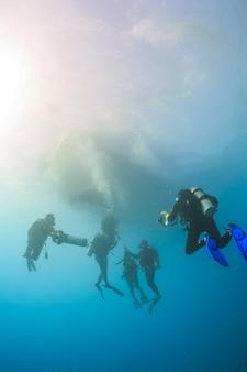 잠수부들은 홍해 배로 돌아갑니다.