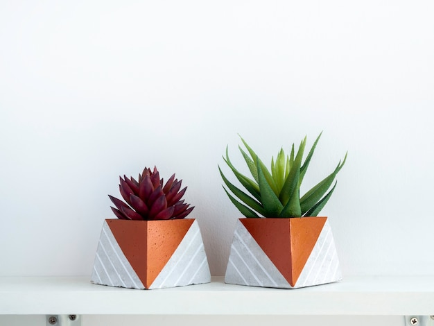 Diy コンクリート ポット、コピー スペースのある白い壁の白い木製の棚に緑と赤の多肉植物のピラミッド形。ユニークな銅色に塗装された2つのセメントプランター。