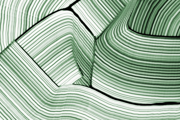 Diy waved textured background in green experimental abstract art