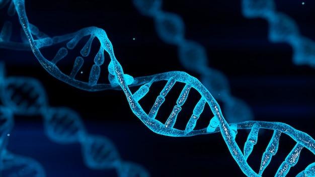 Dna chromosome