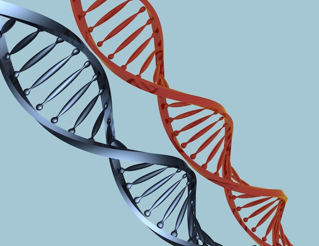 Dna code 3d concept isolated . 3d rendered illustration