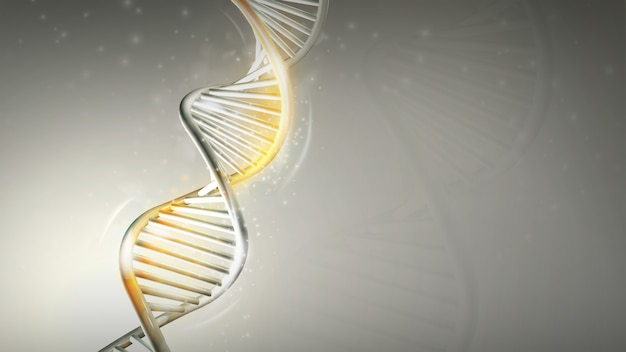 Dna model with golden glow on a light gray background d render