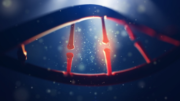 Dna 분자