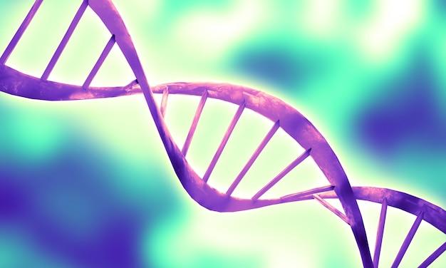 Структура спиральной молекулы днк