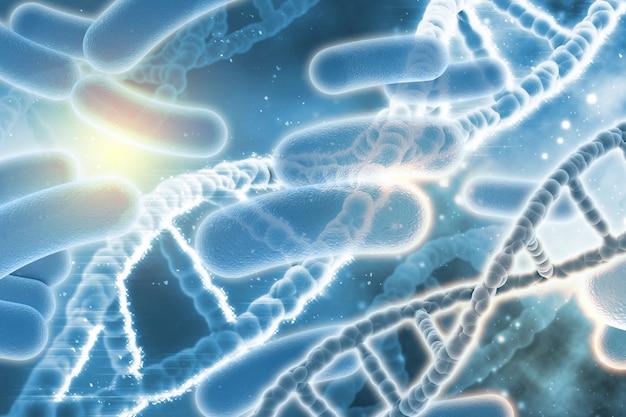 Dnaとバクテリア