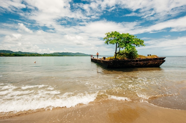 Dock surrounded by water with tree on top at playa negra, puerto viejo de talamanca, costa rica.