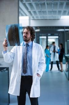 Doctor examining x-ray report