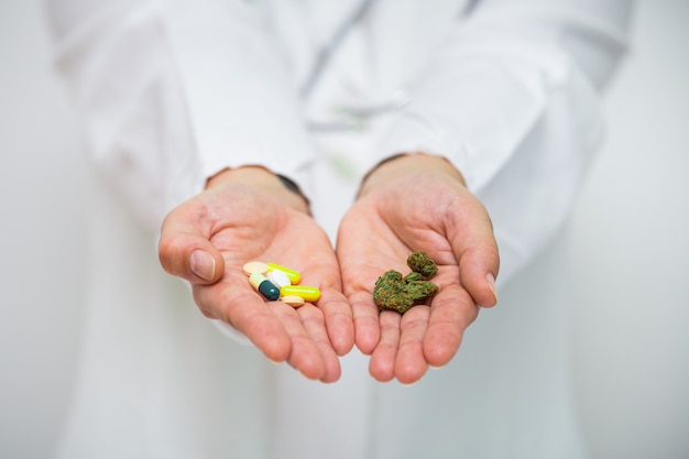 Doctor hand holding bud of medical cannabis and pills.