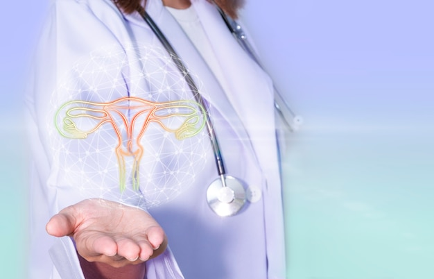 Doctor hands holding a digital ovary with health care and medical services concept
