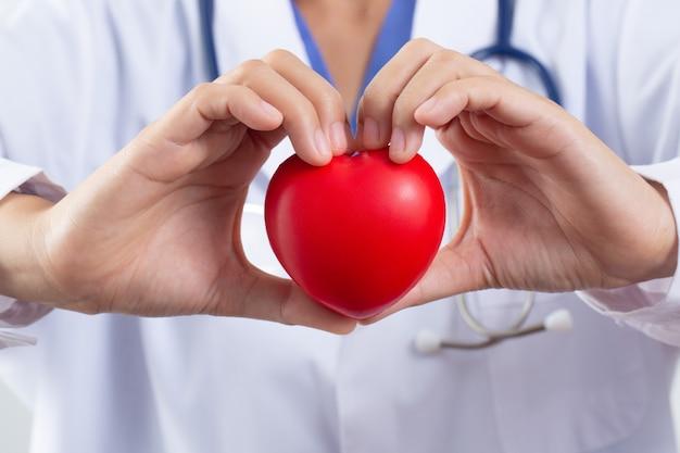 心臓の健康管理の概念のために心臓を保持している医師