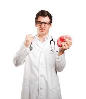 Doctor holding a toy brain against white background
