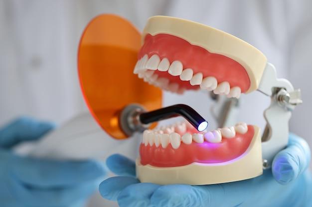 医者は顎と歯科用uvランプを持って歯科用顎の歯科治療の概念を満たします