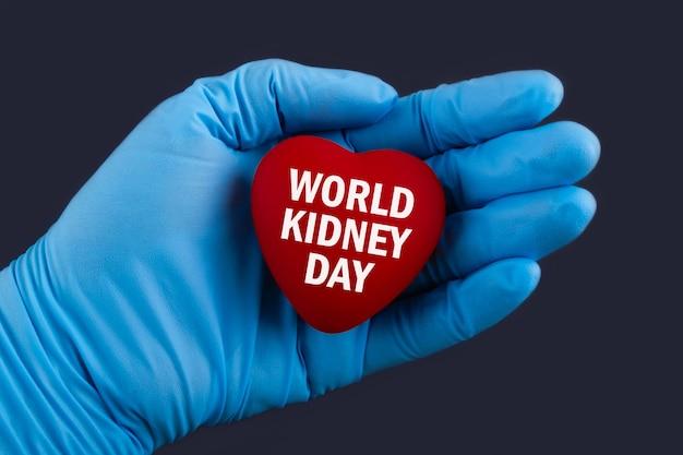 青い手袋をはめた医者は、テキストの世界腎臓の日、コンセプトで心を持っています。
