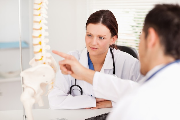 Doctor showing female doctor a spine