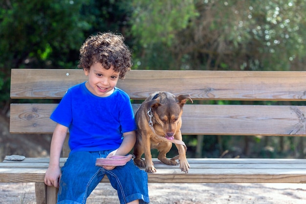 公園の木製ベンチに座って遊んだ後、休んで見下ろしている犬と子供