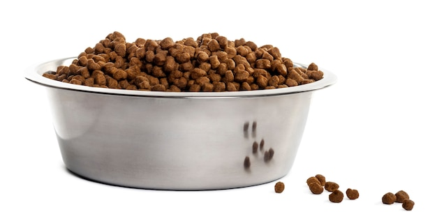 Dog bowl with croquettes full to the brim isolated on white