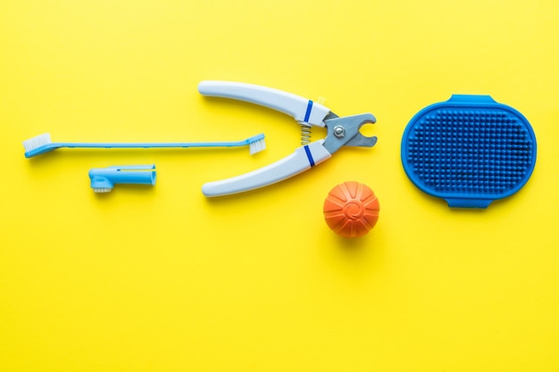 Dog care tools. flat lay, top view. space for text.